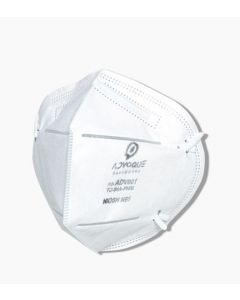 Disposable N95 Respirator